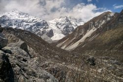 Heli Biking in Langtang Valley with Himalayan Single Track