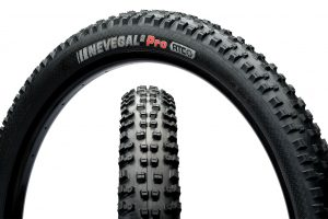 Kenda Nevegal Tires at Himalayan Single Track
